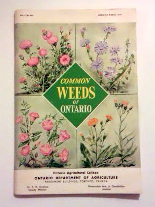 Common Weeds of Ontario. (Bull. 505. Repr. March 1959)